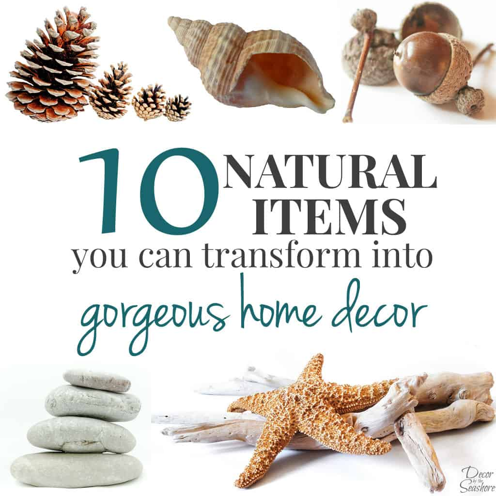 It's crazy that I have so many of these items from nature right outside my door, but I've never even thought to use them in my home decor! Nothing tops free natural home decor, that's for sure! I'll definitely be on the lookout the next time I go to the park! | decorbytheseashore.com
