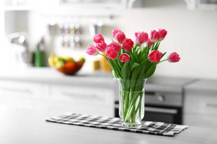 Daily Cleaning Routine Kitchen Counters